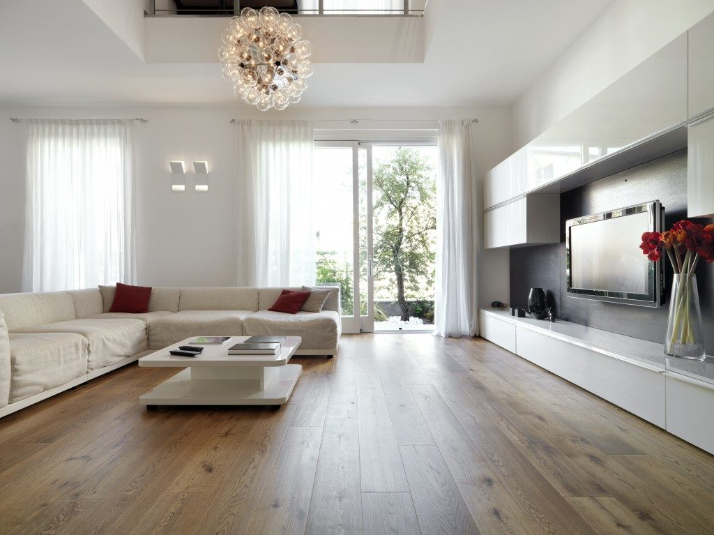 Well-lit contemporary living room