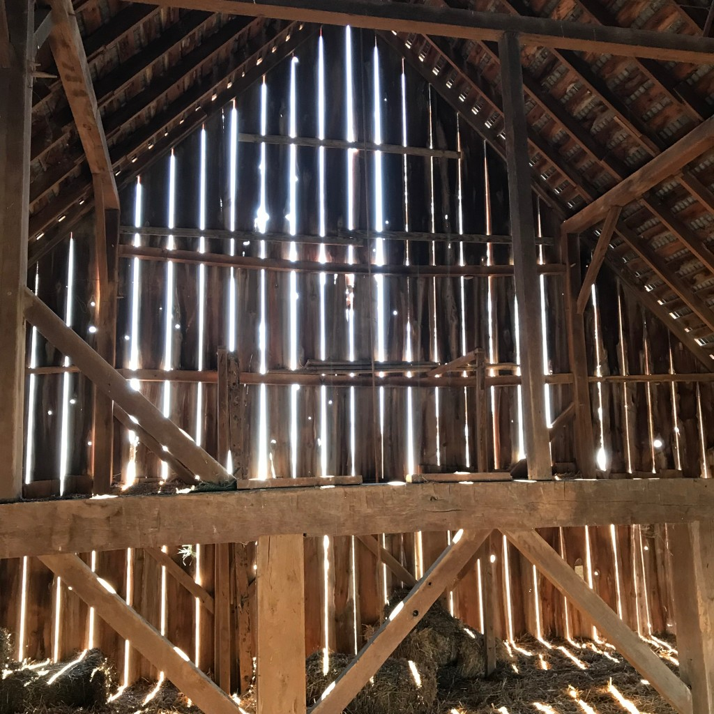 Sun shining through a hay loft in a barn