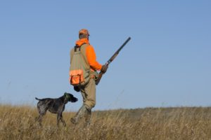 Sport hunting with dog