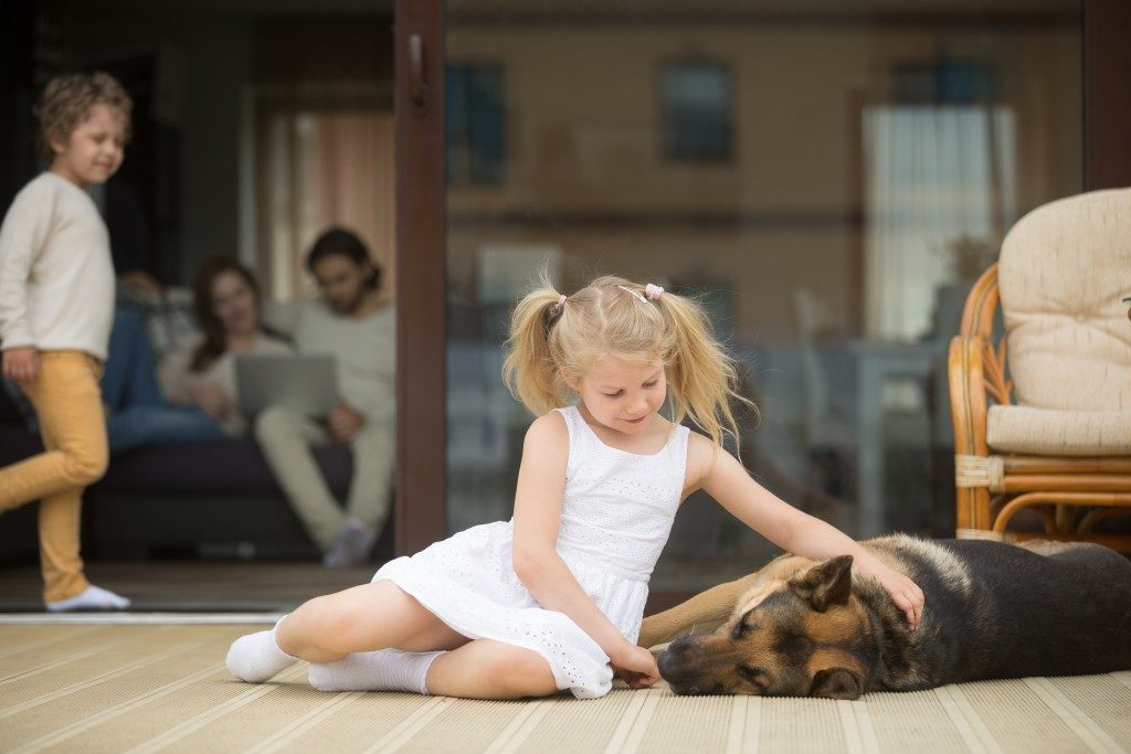 Children and dog having fun on the patio
