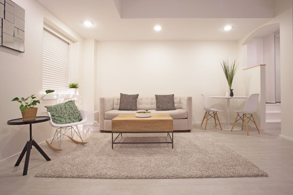 cozy modern designed living room