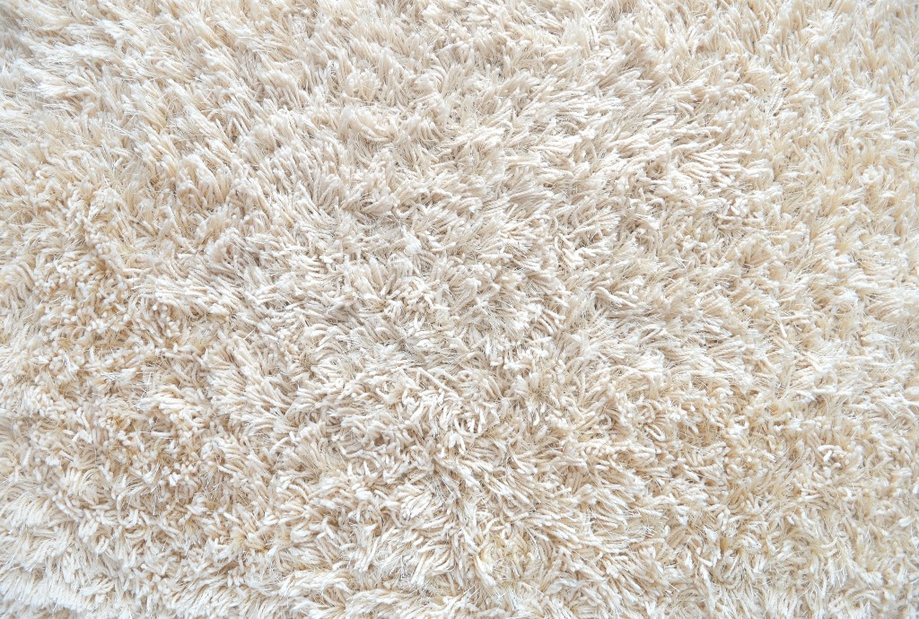 cream colored carpet